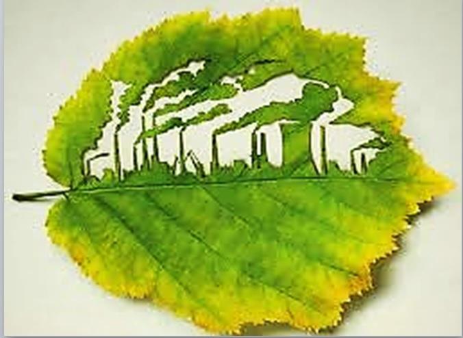 legislaçãoambiental