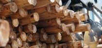 Toras de madeira reaproveitada (Foto: Internet/Divulgação)
