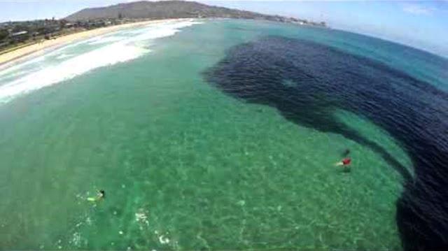 Mancha de poluição decorrente do rompimento da barragem de rejeitos da Cataguases Florestal, no Estado de Minas Gerais, atinge o Oceano Atlântico, no litoral norte do Estado do Rio de Janeiro