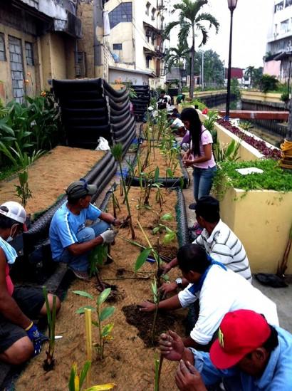 A comunidade local parfticipando ativamente do projeto de revitalização do Canal Paco.