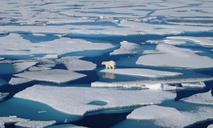 Mar de Behring, Ártico (foto Adrienne Tivy)