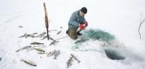 Água voltou ao Mar de Aral, mas pescadores ainda têm de dirigir 20 km para trabalhar (Crédito: Taylor Weidman)