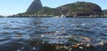 Lixo no mar da Baía de Guanabara