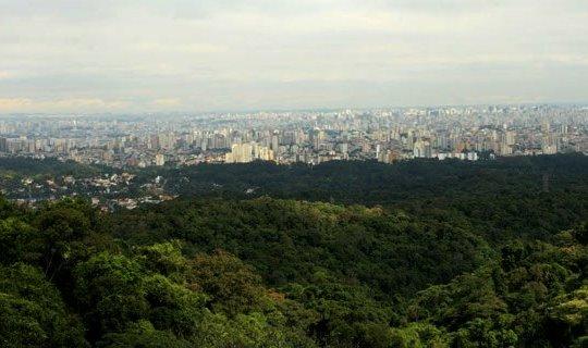 São Paulo e área remanescente da Mata Atlântica (Imagem rma.org)