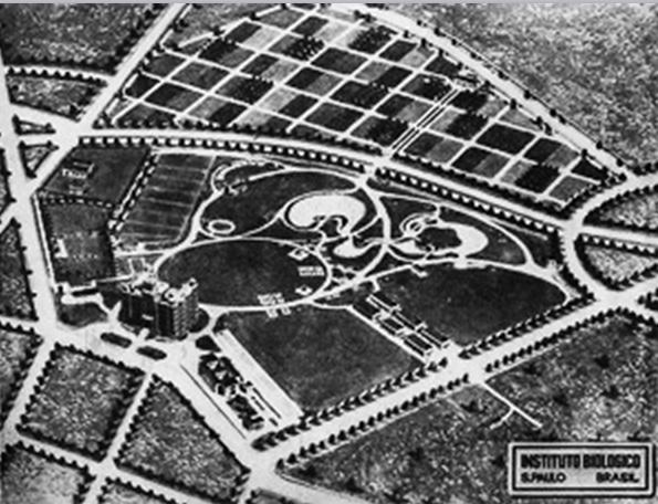 Planta do projeto paisagístico concebida por Arsène Puttemans envolvia os parques e jardins no entorno do prédio (reprodução InstBio)