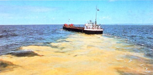 naviospoluiçao