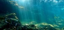A Década do Oceano foi proposta pela ONU para conscientizar a população sobre a importância dos oceanos e para mobilizar atores em ações que favoreçam a saúde e a sustentabilidade dos mares.