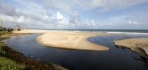 Mancha de óleo no litoral nordestino (Foto : Tácio Moreira / Metropress)