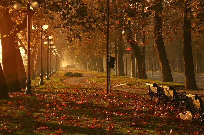 outono-mundodosoleos