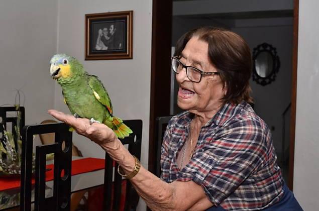 Dona Izaura e seu papagaio. O que dizer de um ente público que encara afeto como crime?...