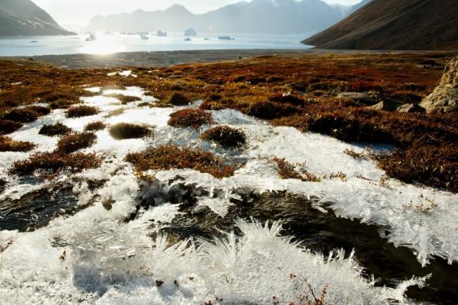 Permafrost na Groenlândia. Foto: Adwo / Shutterstock.com