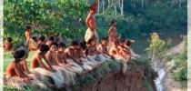 Indígenas brasileiros em área demarcada.