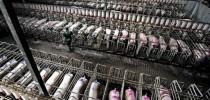 Criação de porcos nos EUA (imagem internet)