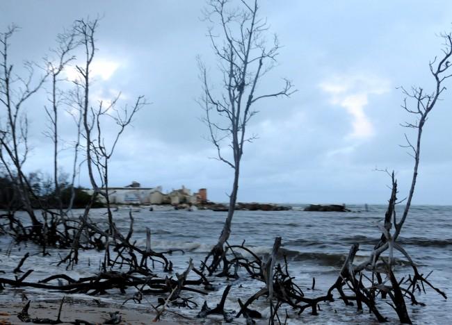 Praia do Saco (SE): área costeira invadida - Foto Paulo de Araujo MMA