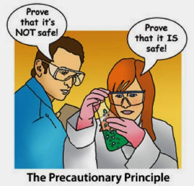 precautionaryprinciple