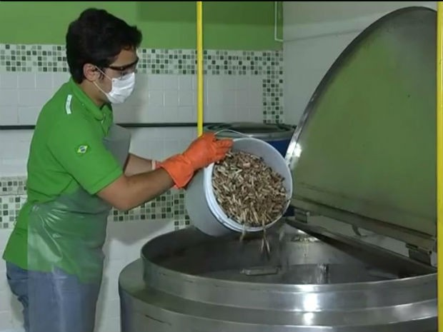 Bitucas se tornam papel após processo de reciclagem (Foto: Reprodução/TV TEM)