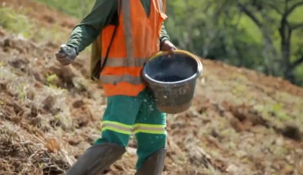 Recuperação ambiental (imagem Renova)