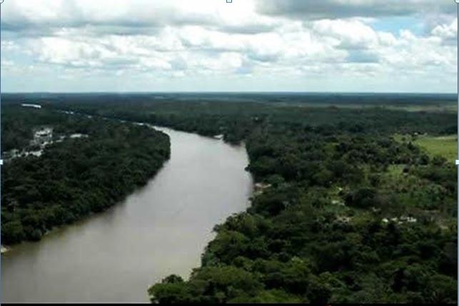 Reserva Biológica do Gurupi no Maranhão