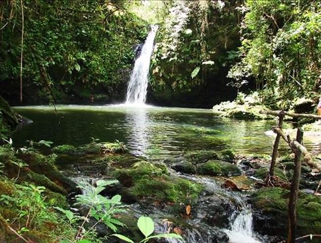 Reserva Natural Salto Morato, Paranaguá,PR