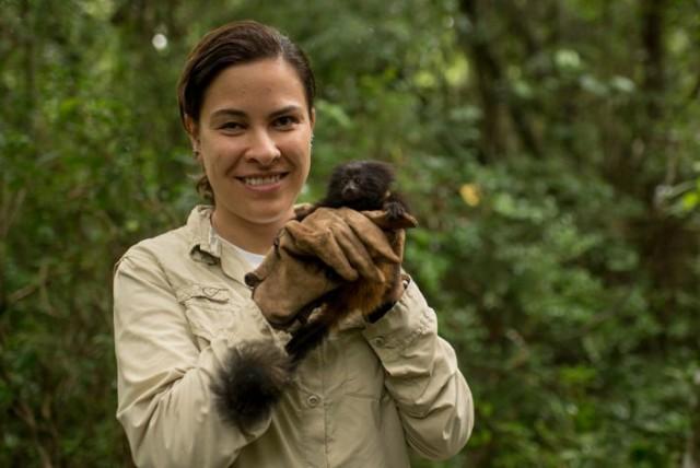 Gabriela Rezende segura um mico-leão-preto, espécie que chegou as ser considerada extinta na natureza. Por seu trabalho de conservação, ela foi uma dos seis pesquisadores agraciados com o Whitley Award, a única das Américas. FOTO DE KATIE GARRETT