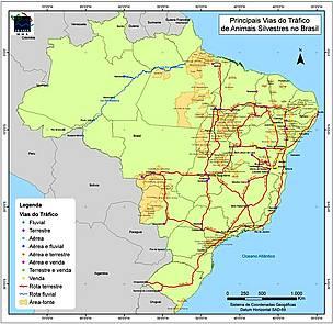 rotas do tráfico de animais no Brasil - IBAMA