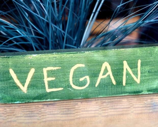 roupas_veganas