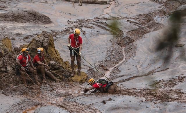 Equipes de salvamento e resgate na lama da Samarco - técnicos da empresa e de de governos atolados em indefinições e sem coordenação