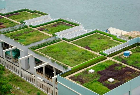 telhado-verde-em-edificio