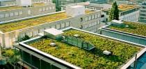 telhado_verde_criativo-1