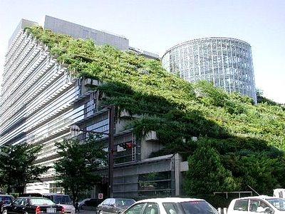 telhados-verdes-7