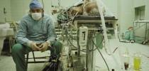 transplante-coração-polônia-zbigniew-religa (1)