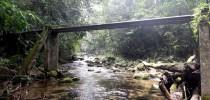 Parque Estadual Restinga de Bertioga, SP