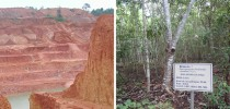 Antes de depois da recuperação da área da Mina Serra da Onça, na região amazônica,  degradada pela mineração