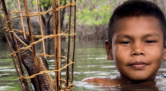 """Imagem relatorio """"Peixes Esquecidos do Mundo"""", WWF"""